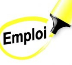 Avis de recrutement d'un expert senior en suivi et évaluation (h/f)